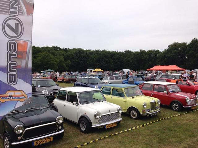 Autojumble, Mini's in het park